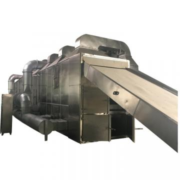 Multilayer Food and Vegetable Continous Conveyor Belt Dryer