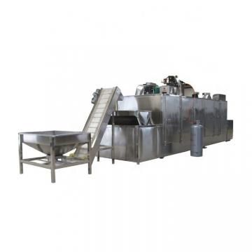 Large Industrial Continuous Microwave Food Belt Dryer